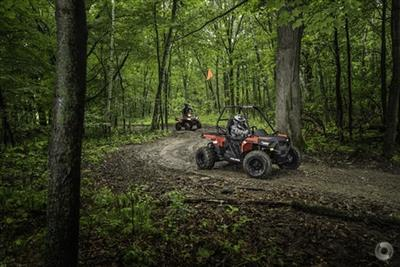 Photo 2. POLARIS ACE 150 ATV