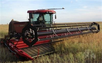 CASE IH WD1903 windrower